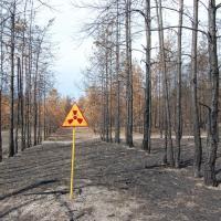 «Естественный саркофаг». Почему так опасны пожары в Чернобыльской зоне