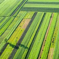 Существующие сельхозугодья могут прокормить еще 800 млн человек