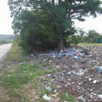 Штрафы – наилучший способ отучить мусорить