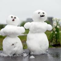 Всемирная метеорологическая организация предупредила о погодных аномалиях летом 2020 года