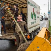 «Деловой сад» в центре Минска высадил интернет-провайдер «Деловая сеть»