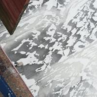 Освежеванные трупы животных лежали на льду в Шклове. Сначала думали, что это собаки (обновлено)