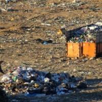 Китайцы построят под Гродно мусороперерабатывающий завод