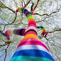 Почему у нас обрезают деревья «под столб» и как с этим бороться