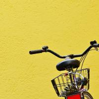Будьте смелыми: велодвижение приносит деньги, но не развивается без политической воли