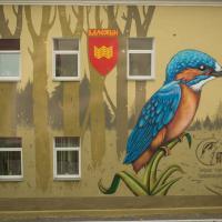 В Воложине зимородка изобразили в граффити на зданиях