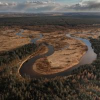 Ученые: деградация экосистем приведет к более серьезным пандемиям