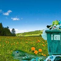 Природа ежегодно перерабатывает более 41 миллиона тонн отходов жизнедеятельности человечества