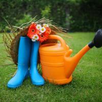 Ухаживаем за садом и отдыхаем от работы. Как не завязнуть в рабочей рутине