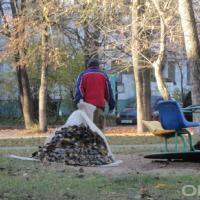 У Гродне сухое лісце збіраюць і вывозяць на … могілкі