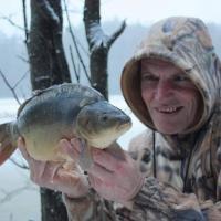 «Моя рыба жива, а те, что остались все умрут». Как в Литве к Рождеству выпускают карпов на свободу (видео)