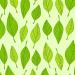 Хотите посадить дерево в Гродненской области? Освобождайте 4 апреля
