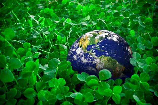 картинки по экологии: