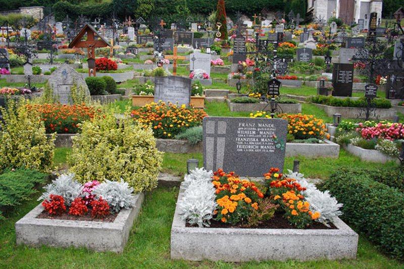Носят ли живые цветы на кладбище где купить цветы орхидеи в с-петербур