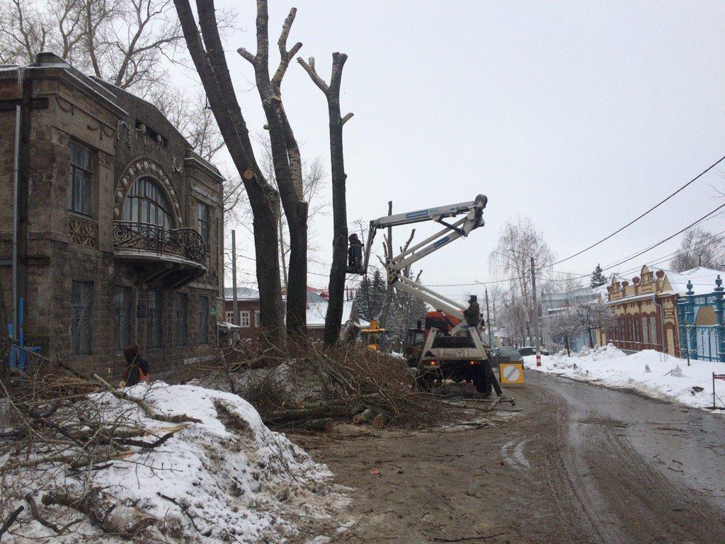 Обрезка деревьев по ул. Льва Толстого неделю назад