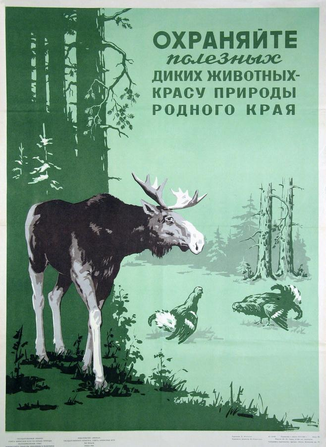 1965 год, аўтар - Іваноў Б.