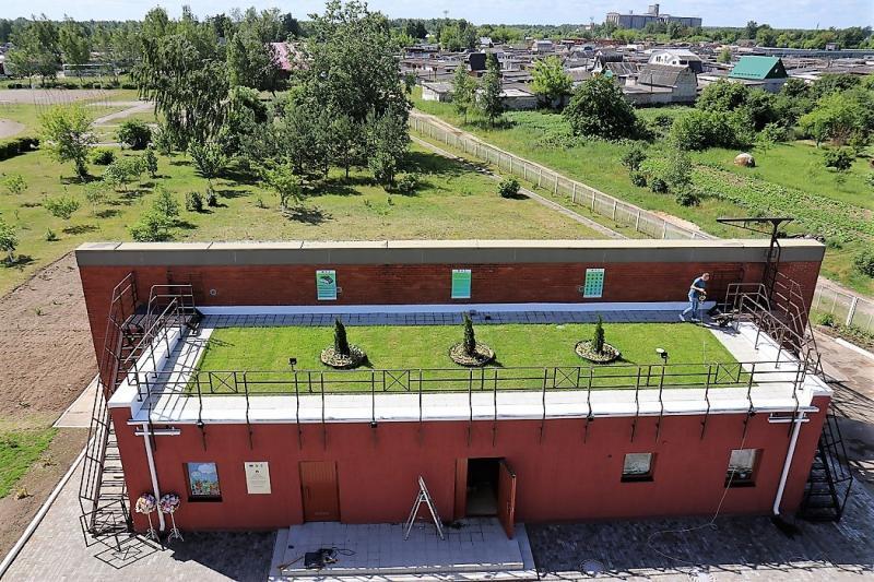А это зелёная крыша школы в Марьиной горке, что появилась летом 2017 года