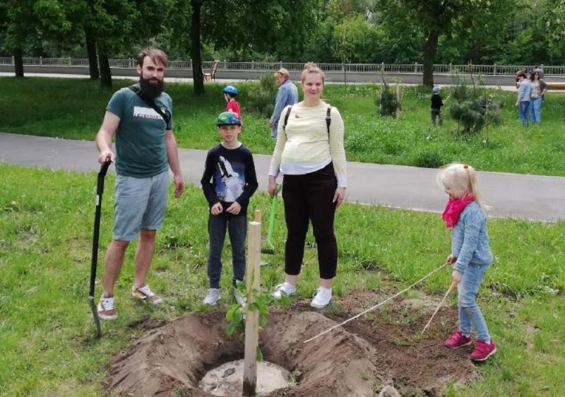 В Бресте на Набережной заложен сад южных деревьев