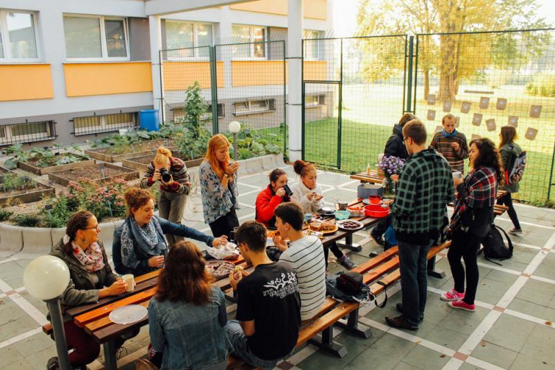 Студенческий огород рядом с общежитием в Чехии