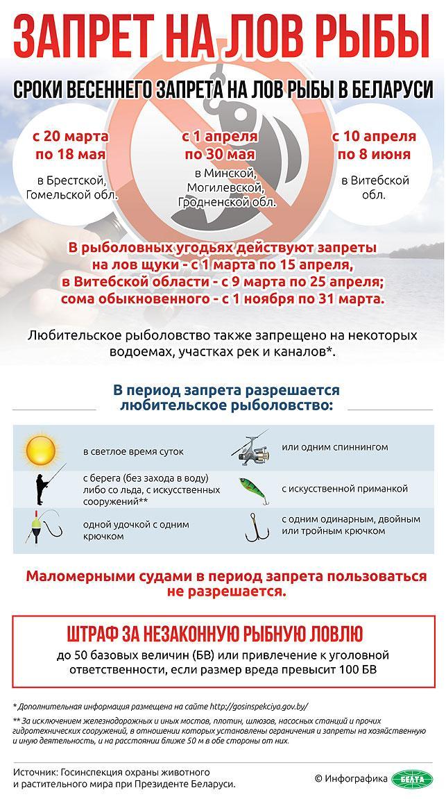 Запреты, установленные на любительскую и спортивную рыбалку в Смоленской области