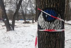 Сквер «Котовка»: как Минск теряет ещё одну зелёную зону