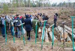 В Узденском районе посадили целый лес!