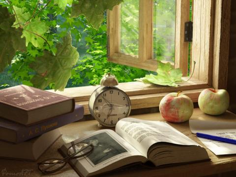 Что читать летом: книги для чтения на даче, в походе, в лесу