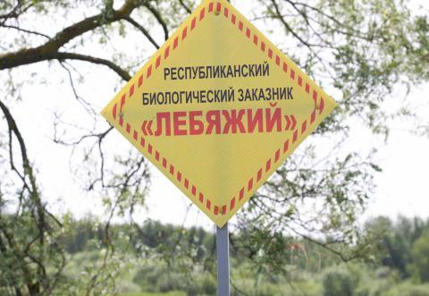 Заказник «Лебяжий» перекроили указом президента. Почему генаплан Минска постоянно меняют?