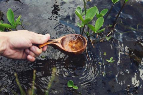 Что делать, если вы столкнулись с загрязнением воды? 5 простых решений от «Зелёного телефона»