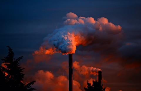 Дым сизый, розоватый, чёрный. «Кроноспан» хочет расшириться, но ему предлагают решить старые проблемы