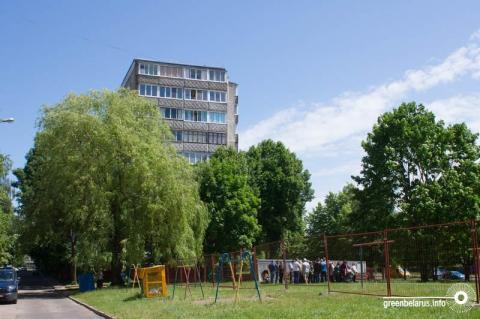 В Минске составляют первую публичную карту городских деревьев. Помочь может каждый!