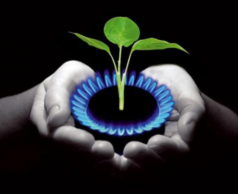 Топливо взамен отходов. Как в Беларуси обстоят дела с производством биогаза