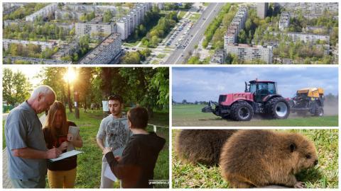Неделя с Зелёным порталом: защита Котовки, Витебский урбанистический форум и «Бобровое сафари»