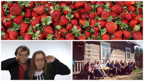 Неделя с Зелёным порталом: ветроэнергетика в Беларуси, каркасное домостроение и сверчковая ферма