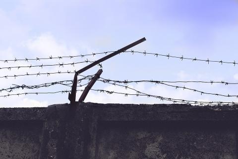 Заявление экологической общественности по поводу жестокого задержания и административного ареста активисток ОО «Экодом»