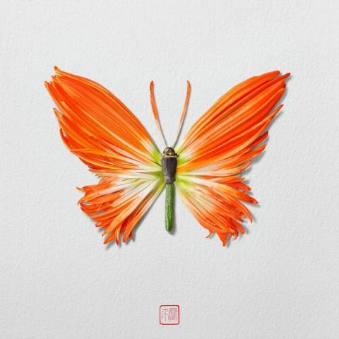 Художник Раку Иноуе создаёт скульптуры насекомых из листьев и лепестков и показывает хрупкость и изменчивость мира