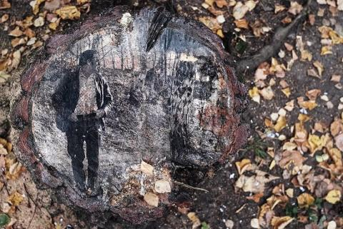 «Деревья помнят всё». Посмотрите, какой трогательный проект сделали в лесу недалеко от Москвы