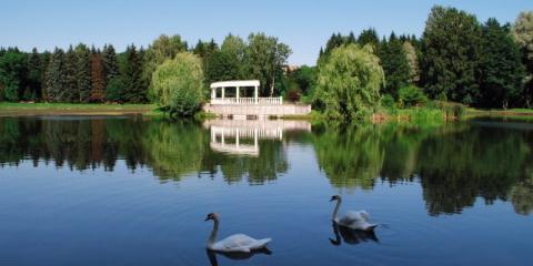 Ботанический сад на кончиках пальцев. В Минске открыли инклюзивную тропу для людей с ослабленным зрением (видео)