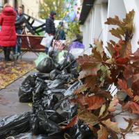 400 кг макулатуры и 80 саженцев: в Минске прошёл Международный день без бумаги