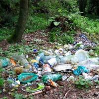 Минчанин: Не понимаю, что у нас за люди? Выбрасывают мусор прямо в лесу