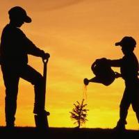 Лучшего общественного эколога выбирают в Беларуси