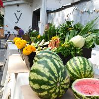 Органическая еда, выставка «Природа звука» и концерт «Šuma voices» — фестиваль экологии и искусства зовёт на юбилей!