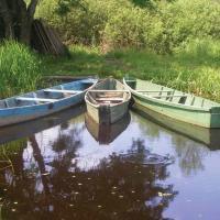 Кто и зачем будет мониторить малые реки на Полесье?