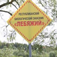 Проект плана управления заказником «Лебяжий» готов к обсуждению