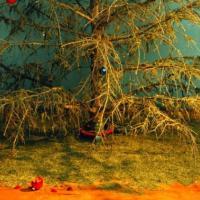 7 экологических альтернатив для старой новогодней ёлки