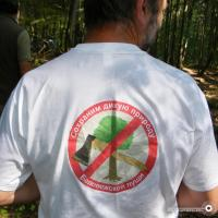 Беловежской пуще возобновили действие сертификата FSC