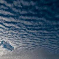 Беларусь в 100 раз сократила потребление озоноразрушающих веществ