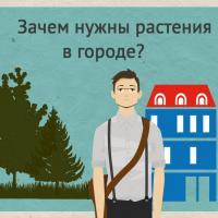 """Инфографика """"Зачем городу растения?"""""""