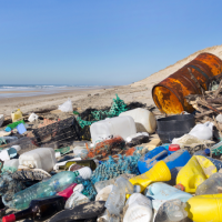Миллионы тонн пластиковых отходов плавают в Мировом океане