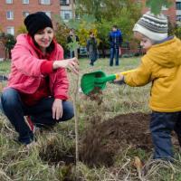 Витебчан приглашают заложить первый в городе общественный многоуровневый парк